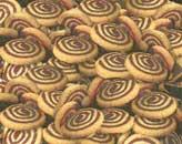 עוגיות שבלול וניל שוקולד