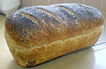לחם בקלות - חלק א'